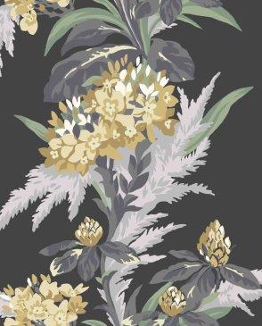 коллекция Aurora от 1838 (Великобритания)