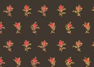 Обои Cole & Son Collection of Flowers 81-4016