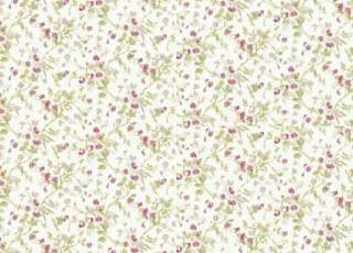 Обои Cole & Son Collection of Flowers 81-11048